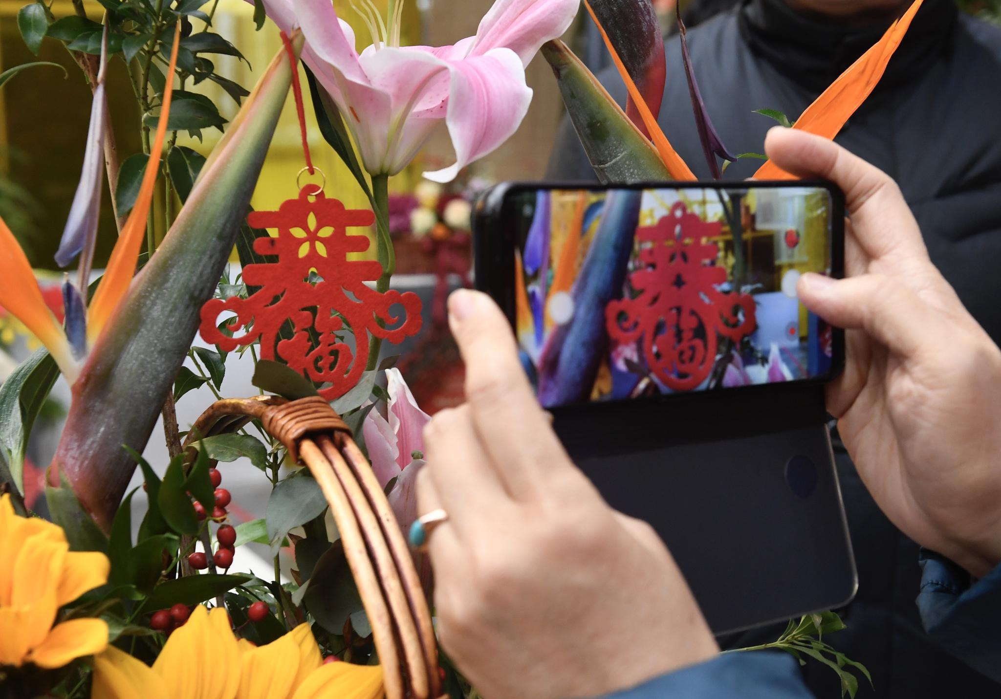 2020年北京迎春年宵花展开幕,这些市场也有活动图片
