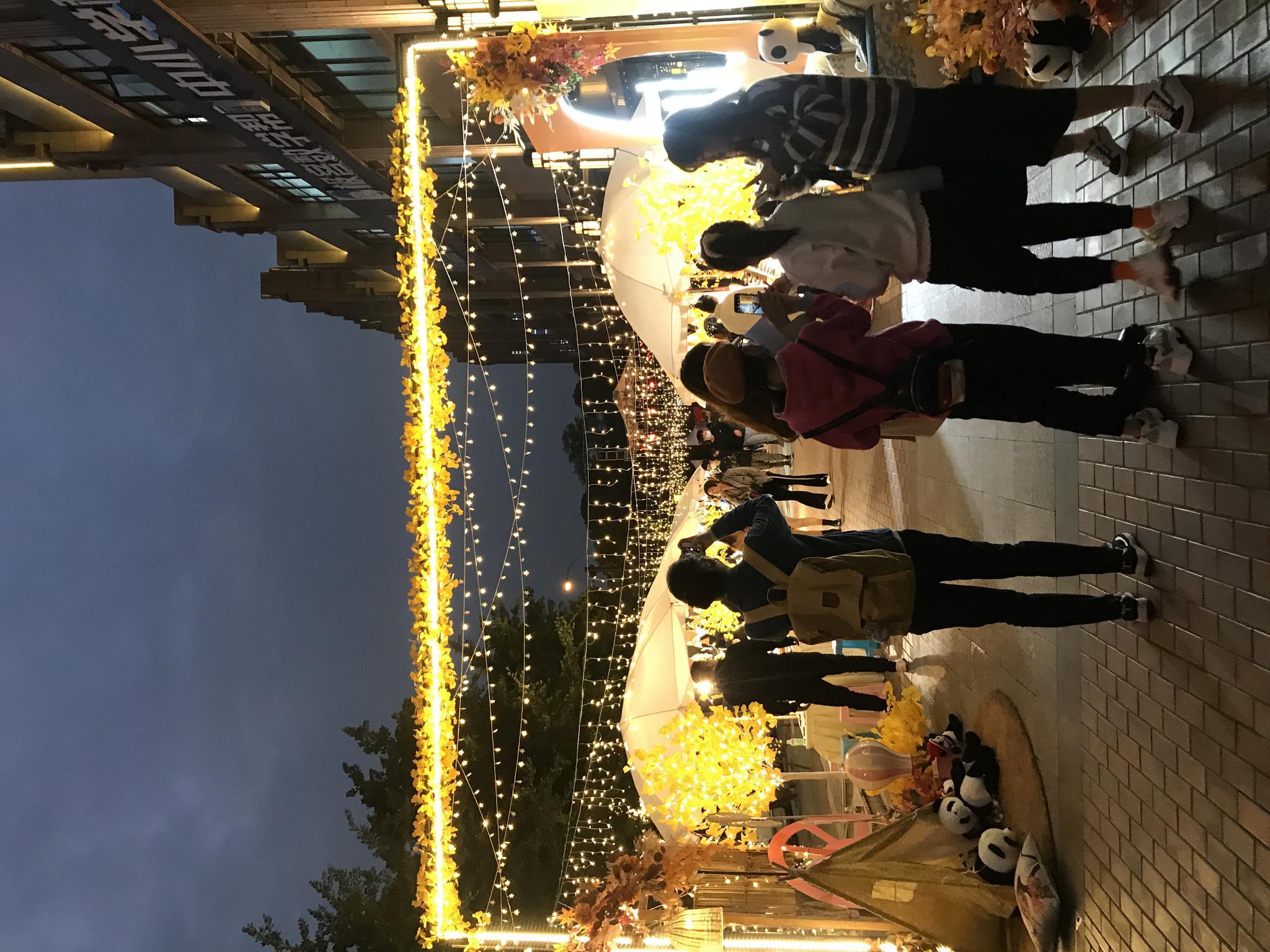 逛文创、听音乐会、看川剧表演……快来第四届天府银杏文化艺术季打卡图片