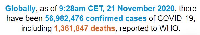 世卫构造:全世界新冠肺炎确诊病例超5698万例(图1)
