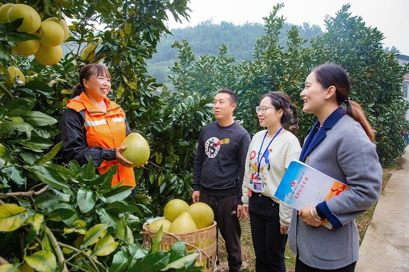 《中国纪检监察报》报道湖北:用好大数据 不丢大脚板