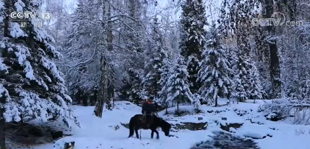 新疆哈巴河:路远雪大 快递员骑马送快递图片
