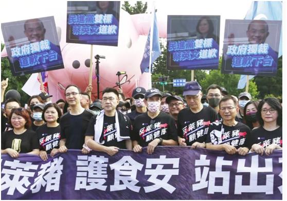 反对进口莱猪 国民党4任党主席走上街头(图)图片
