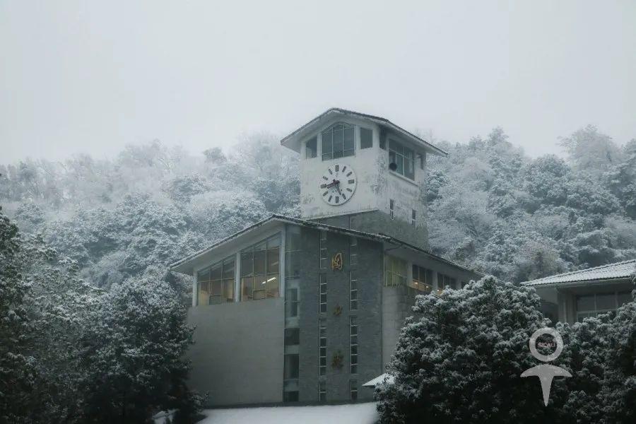今天这么冷,川农到底多少度?图片