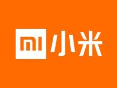 """意外,雷军:小米公司成立之初曾考虑过 """"大米""""""""黑米""""""""红辣椒""""等名字"""