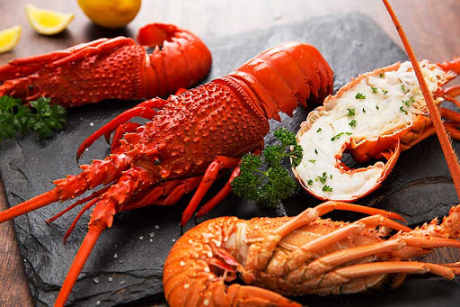 澳大利亚龙虾澳食品出口协会图