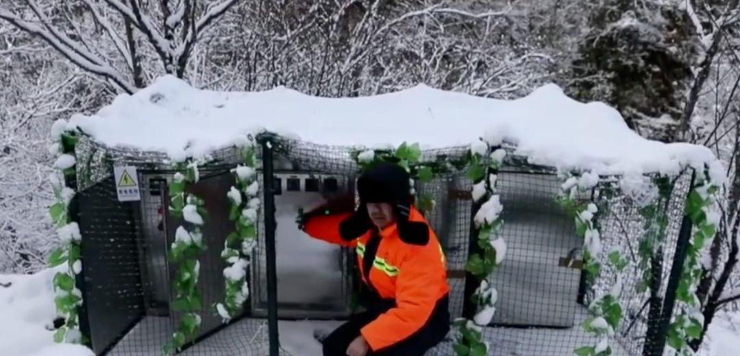 ▲工作人员打开热融除冰系统(视频截图)