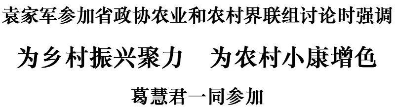 袁家军参加省政协农业和农村界联组讨论:为乡村振兴聚力 为农村小康增色图片