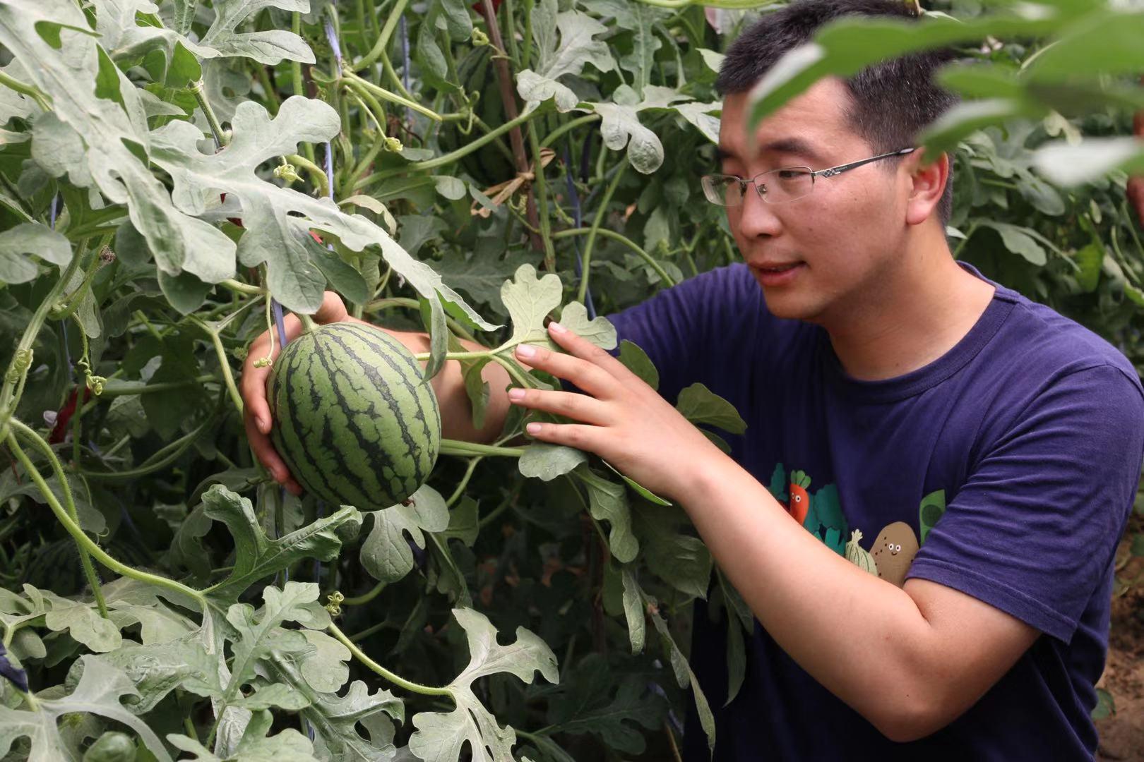 爱农业、懂科技、会管理 北京首次定义新时代农民企业家图片