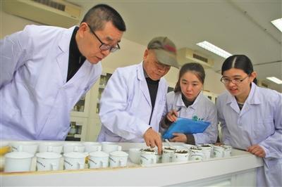 吴裕泰茶叶获评新京报年度责任贡献力企业图片