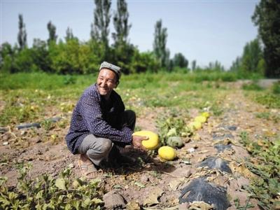 百果园获评新京报年度责任贡献力企业图片