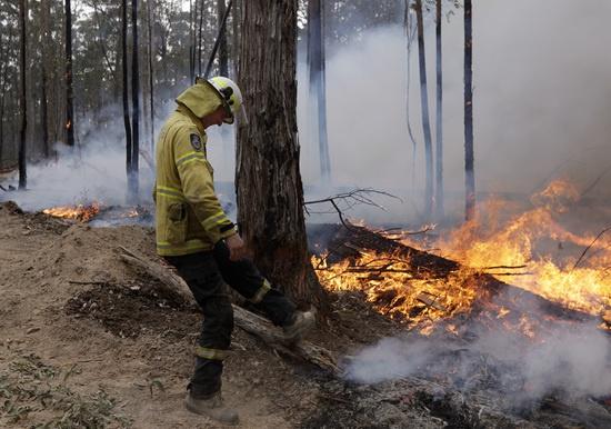 1月12日,在澳大利亚新南威尔士州博达拉附近,一名消防员巩固防火隔离带。新华社 图