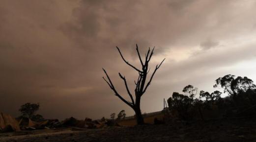 澳洲雷暴天气或加深山火灾难 旅