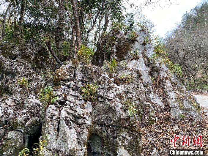 http://www.edaojz.cn/jiaoyuwenhua/439126.html