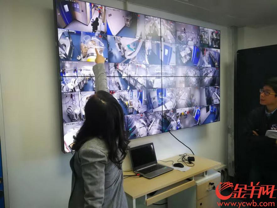 实验室的监控屏幕密切监控小鼠 陈辉 摄