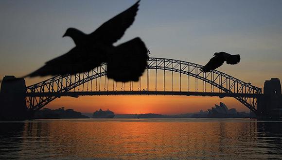 山火还未结束,澳大利亚旅游凉了么?