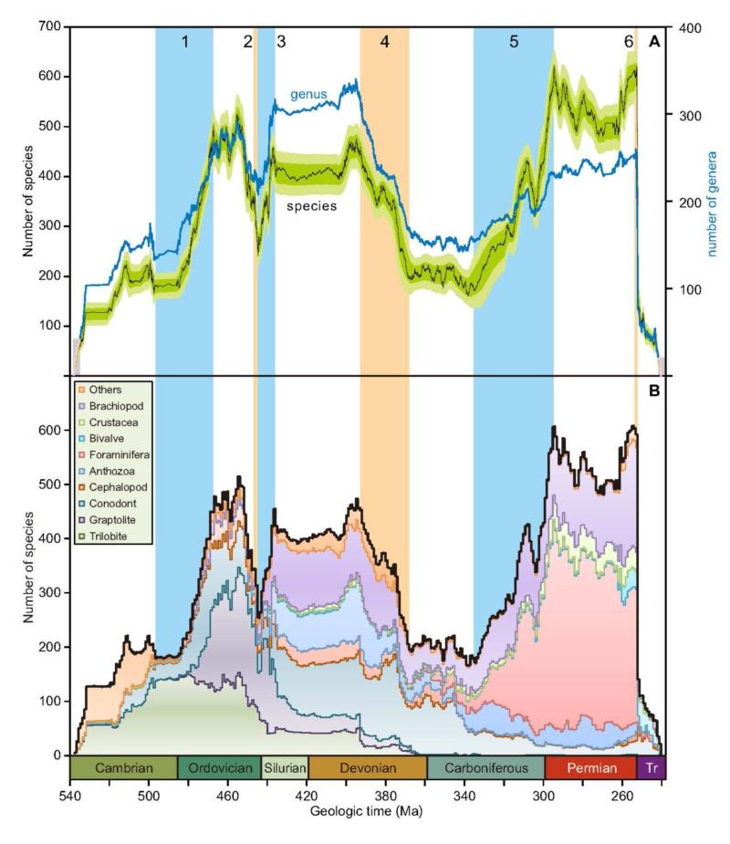 《Science》刊登南京大学地球科学与工程学院研究成果:大数据和超算揭秘古生代海洋生物多样性演化