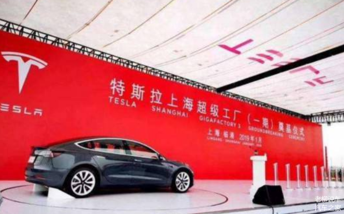 上海买特斯拉像买大白菜新能源车价格战蓄势待发
