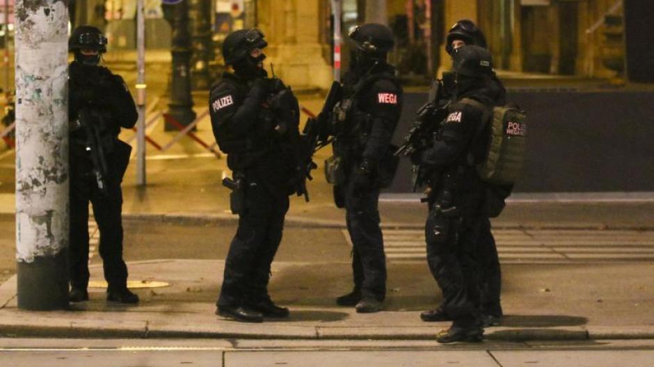维也纳恐袭案后续:德国展开突击