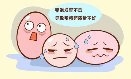 卵泡发育不良对怀孕有影响吗?嘉乐生殖专家为您解答