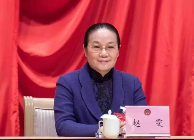 她主动辞去上海市副部级领导职务图片