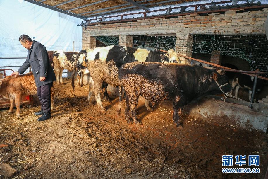 新疆博尔塔拉蒙古自治州埃勒木图村脱贫攻坚纪实