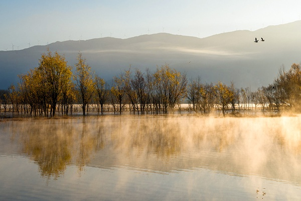 镜头   秋色浓  湿地美图片