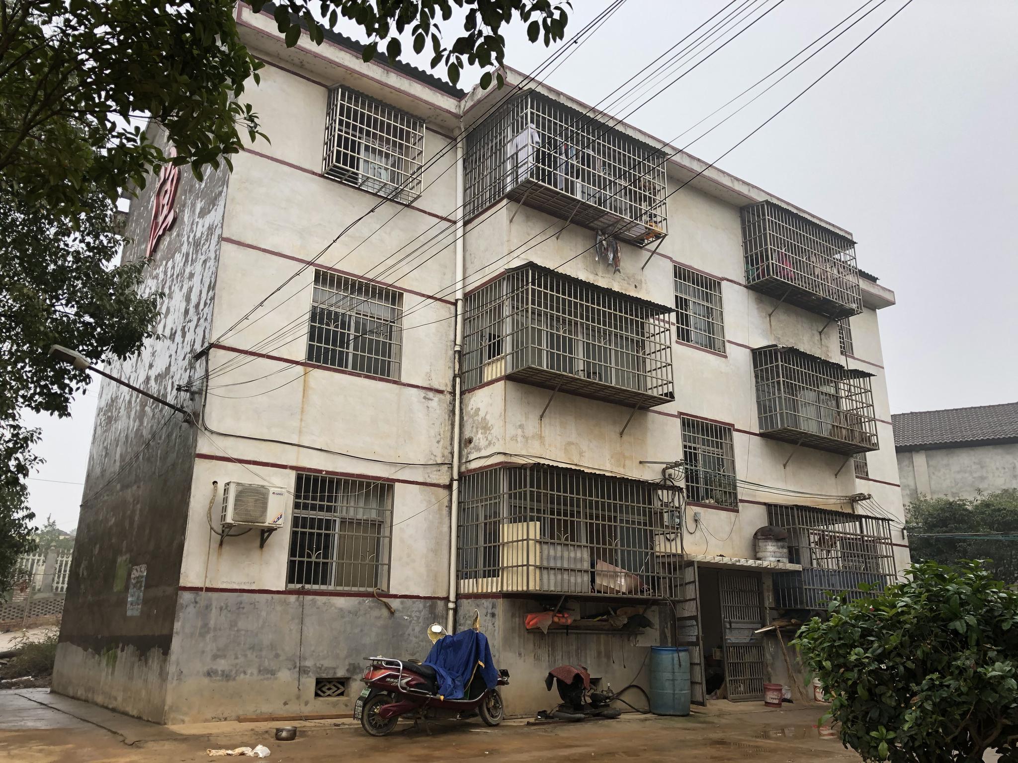 位于岳阳县城以北樟树潭的渔民新村。新京报记者 韩沁珂 摄