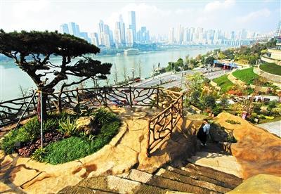 呼归石花阶公园 两个多月,边坡蜕变为一个花阶公园