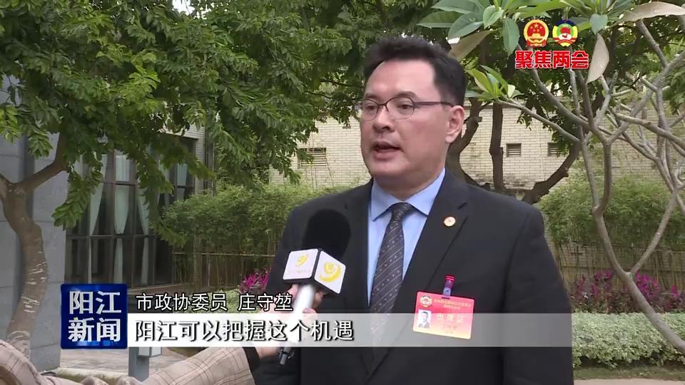 港澳、驻外委员为阳江家乡献良策谋发展