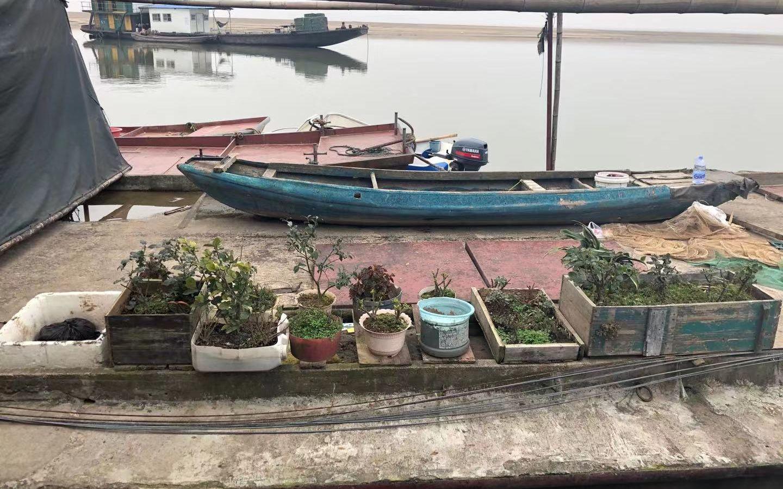 摆满鲜花的船头。新京报记者 韩沁珂 摄