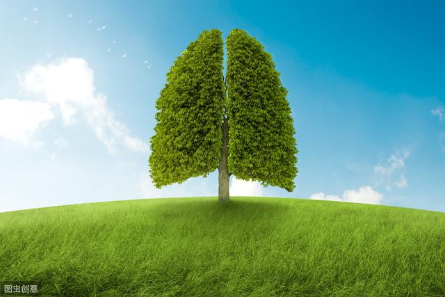 CT照出肺结节,是不是就是得了肺癌?