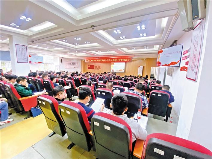 建立现代企业制度 促进经济转型升级
