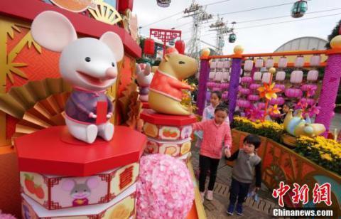 香港海洋公园花团锦簇鼠豚迎新春