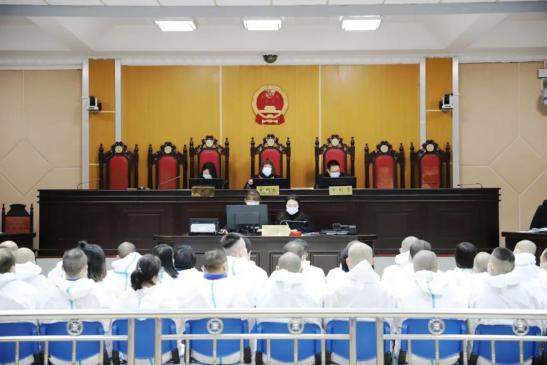 """""""中绿""""传销案一审开庭 38名被告人出庭受审图片"""