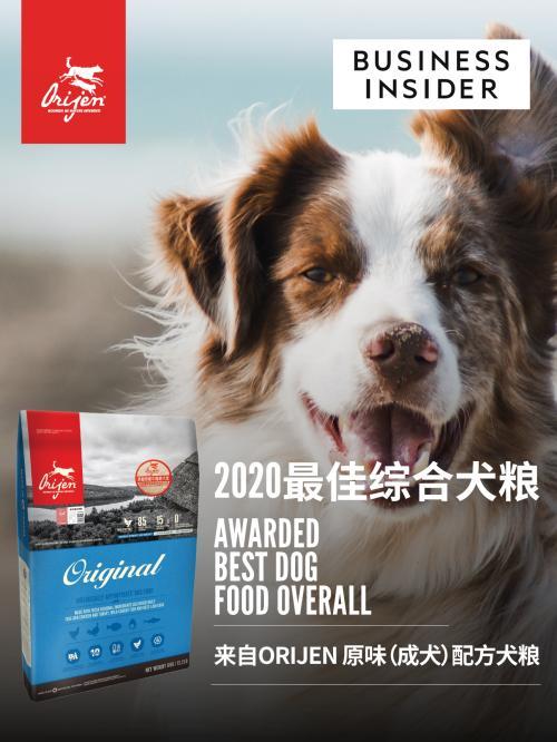 全美顶级商业新闻网站之一《商业内幕》评选2020最佳综合犬粮