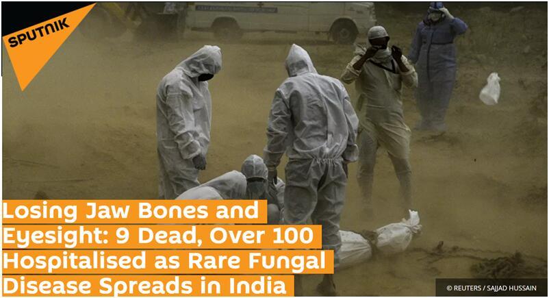 外媒:印度新冠康复患者体内现罕见真菌 致命真菌病在印蔓延已致9死
