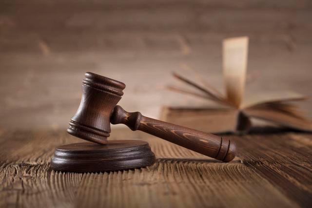 新民法院对14名黑社会性质组织成员公开宣判
