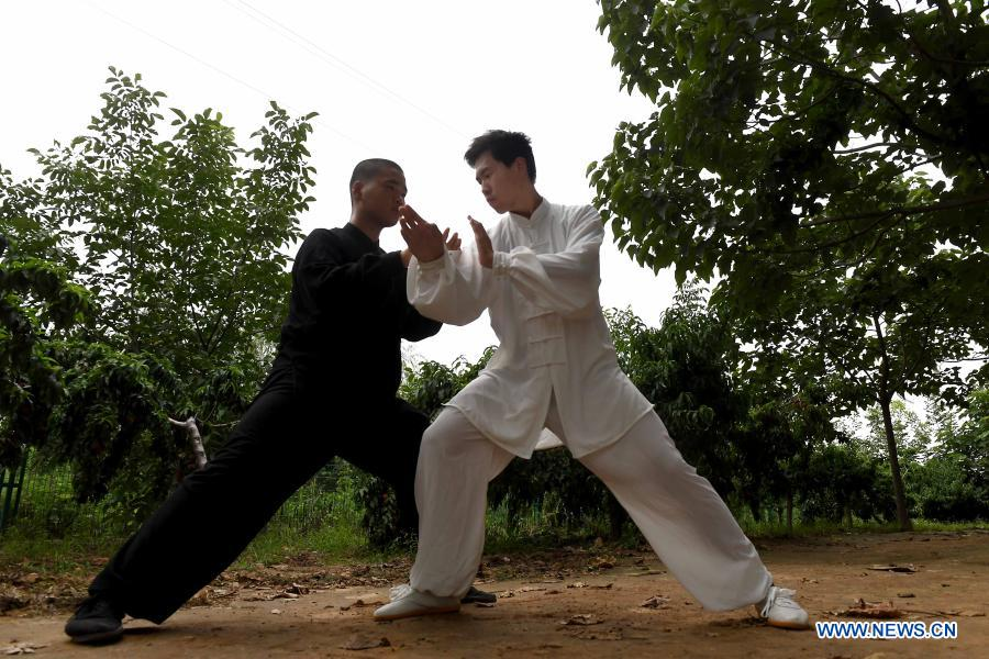 China's Taijiquan listed as UNESCO Intangible Cultural Heritage