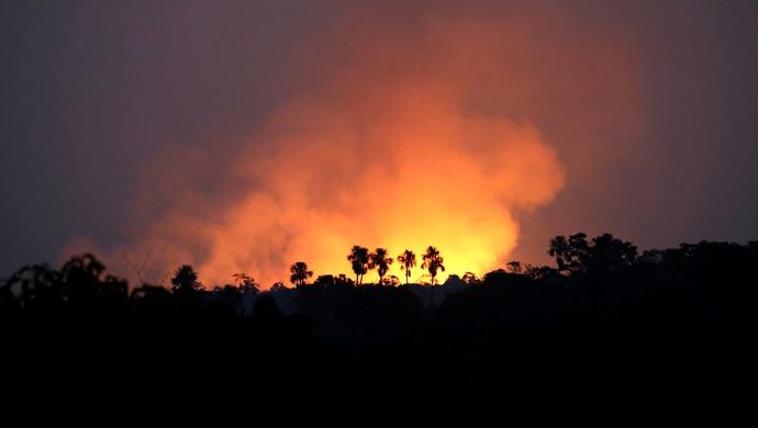 森林草原防火与扁鹊治病有何相似之处?图片