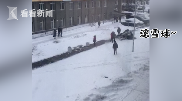 视频|大象搬家逃到雪地撒欢 马戏团:它看到雪想散步