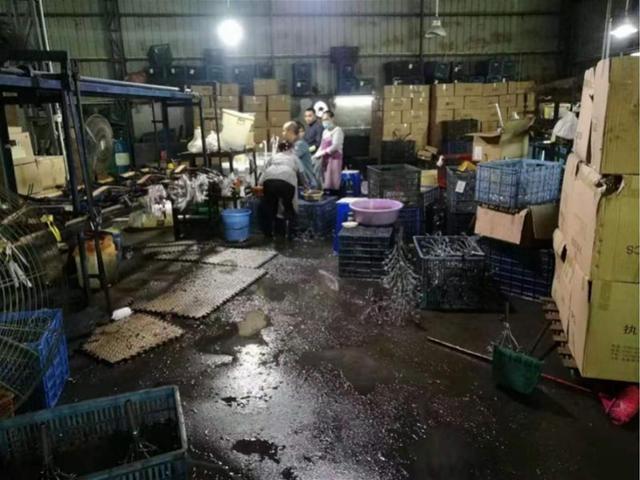 """东莞一工厂违法排污,环保执法人员送达""""告知书"""",却遭持刀抗法"""