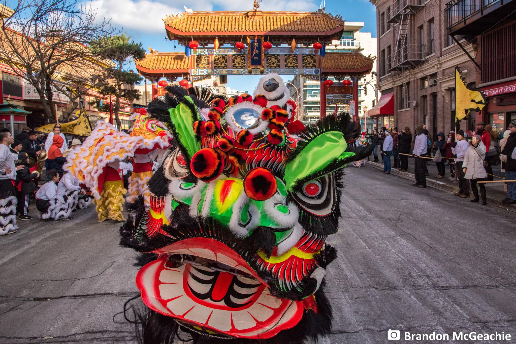 到此一游|传统舞狮 在温哥华热闹过年