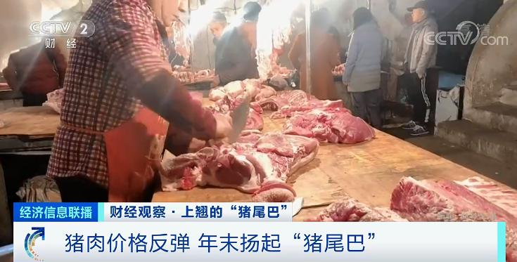 猪肉价格反弹 为何好不容易降价又涨了