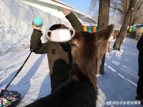 东北人在线委屈:我们也不吃野味啊,野味不吃我们就不错了
