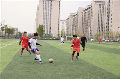 2019年安徽省青少年城市足球联赛 合肥赛区精彩收官