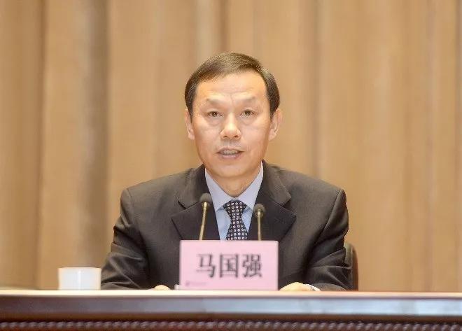 因工作需要 马国强辞去武汉市人大常委会主任图片