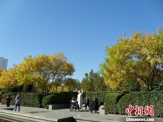 资料图:河北现蓝天,老人们在公园里悠闲地享受着好天气。 刘明怡 摄