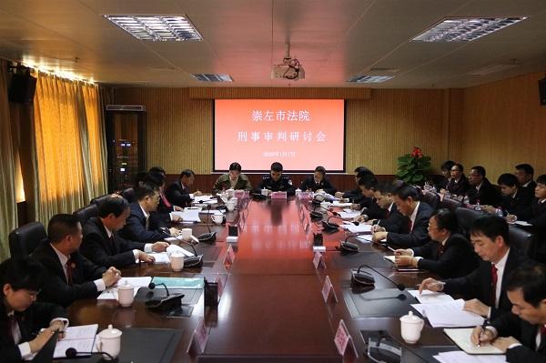 崇左市法院刑事审判研讨会在大新法院召开图片