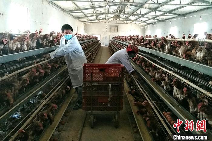 http://www.jinanjianbanzhewan.com/liuxingshishang/35152.html