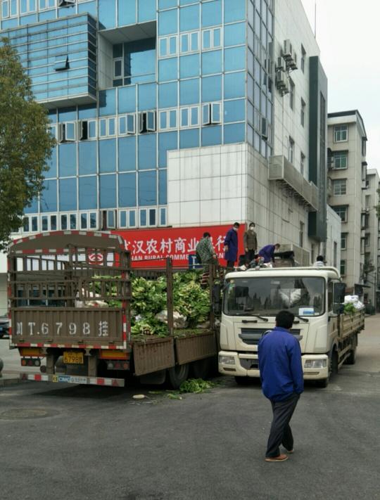 8日采摘60吨!四川农业大学为武汉送去新鲜蔬菜